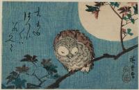 Утагава Хиросигэ. Спящая сова на ветке на фоне полной луны