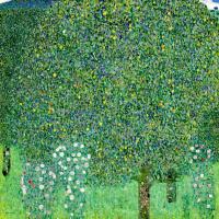 Густав Климт. Кусты роз под деревьями