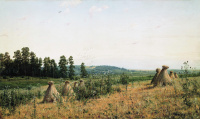 Сжатое поле. Полесский пейзаж