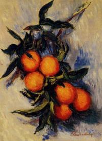 Ветка апельсинов