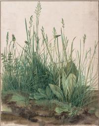 Трава (Большой кусок дерна)