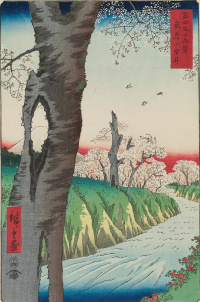 "Koganei in Musashi province, the time of flowering. The series ""36 views of Fuji"""