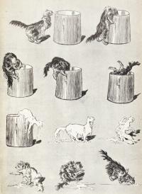 Кошки: картины без слов. Губительное кошачье любопытство