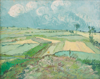 Wheat fields after the rain (a Province over)