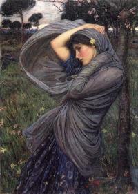 The North wind