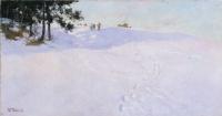 Лыжники на вершине снежной горы