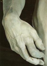 Давид. Фрагмент руки