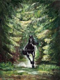 Elena Sh. Black horse