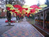 """Алексей Гришанков (Alegri). """"Harburg umbrellas"""""""