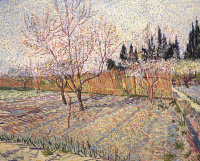 Винсент Ван Гог. Сад с цветущими абрикосами
