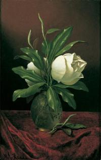 Два цветка магнолии в стеклянной вазе