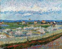Винсент Ван Гог. Персиковые деревья в цвету