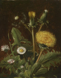 Still life with dandelions and daisies