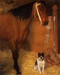 Horse and dog in a stable