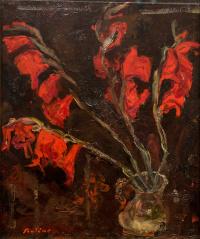 Красные гладиолусы