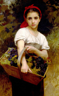 The picking of the grapes