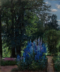 Lupinus in the summer garden (Blooming Foxglove)