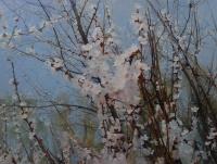 Гелена Павленко. Ветка абрикоса