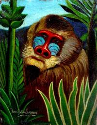 Mandrill in the Jungle