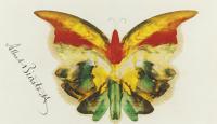 Альберт Бирштадт. Желтая бабочка II