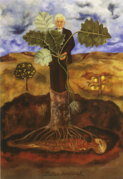 Portrait of botanist Luther Burbank