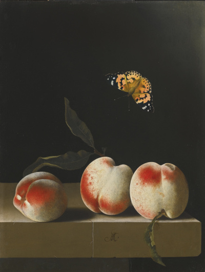 Butterfly and three peaches on a stone countertop