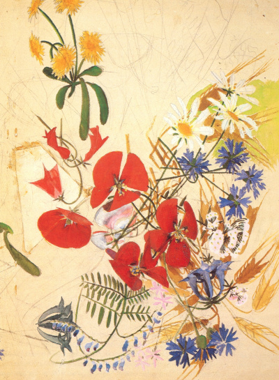 The flowers of the field. Sketch for embroidery