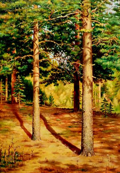 Pines (copy Shishkin)