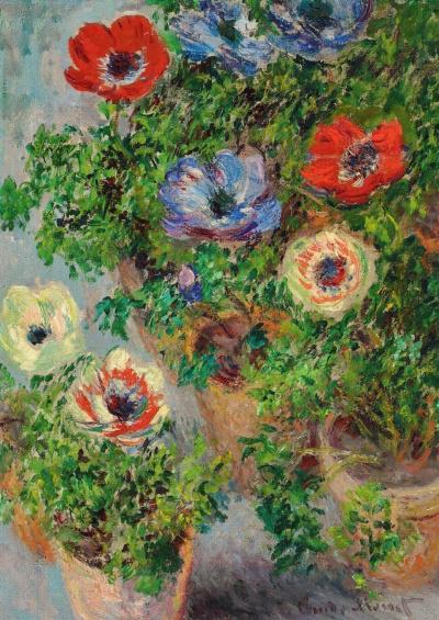 Anemones in pots