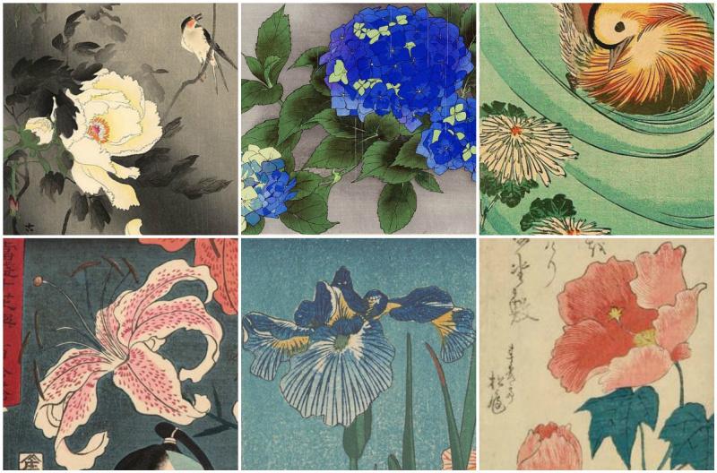 Не сакурой единой: любимые цветы японских художников