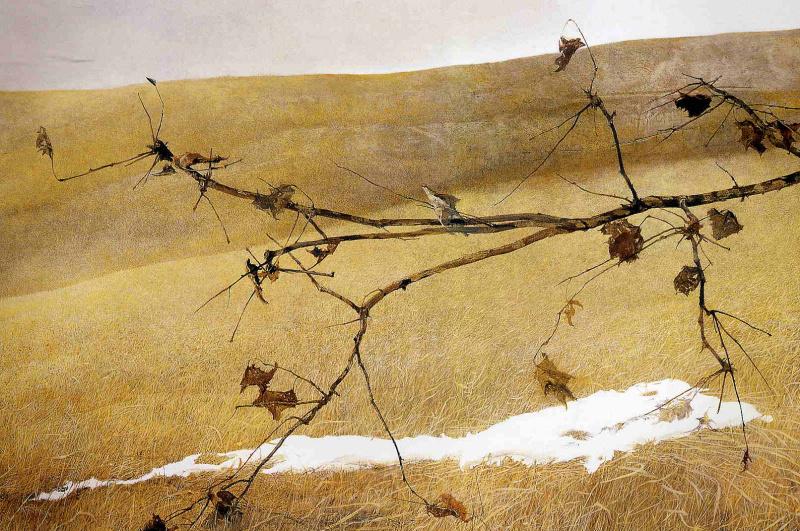 Andrew Wyeth. Long branch