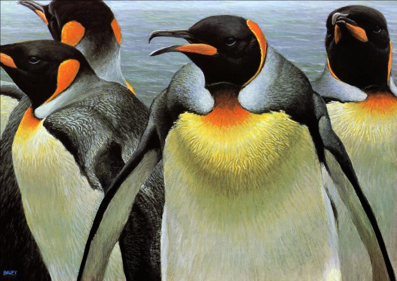 пингвины на картинах художников отличается спокойным