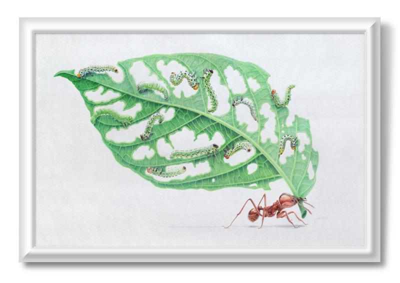 Алексей Фомин. The leaf hunting