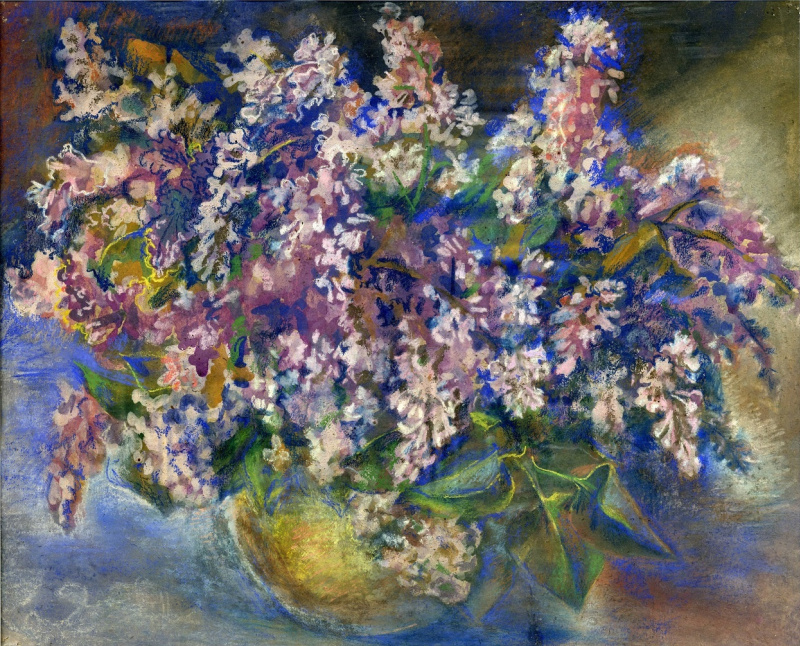 Hope L. Kamenskaya. Lilacs bloomed in the spring !