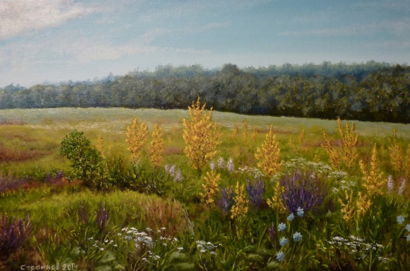 "Vitaliy Vadimovich Stroynov. ""Flowering meadow."""