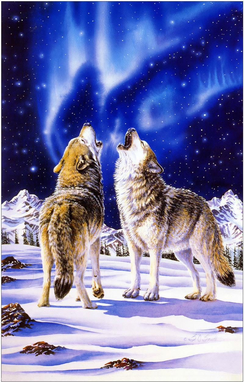Движущиеся картинки с надписями с волками