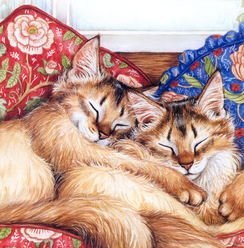 Открытка два котика