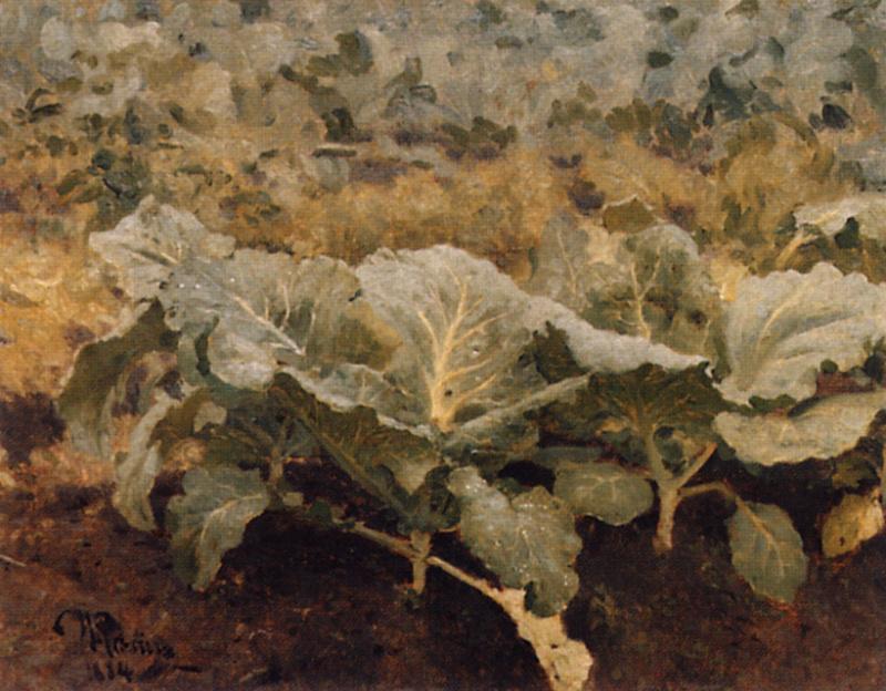 Илья Ефимович Репин. Капуста