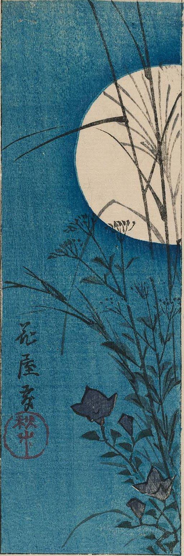 Утагава Хиросигэ. Осенние цветы в ночном саду