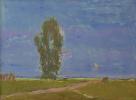 Evening. The steppe