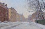 Frozen city. St. Petersburg