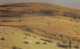 Василий Васильевич Верещагин. Место битвы 18 июля 1877 г. перед Кришинским редутом под Плевной. Этюд
