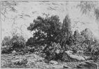 Пьер Этьен Теодор Руссо. Вид на плато Беллекруа