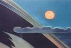 Поднималась луна