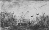 Шарль-Франсуа Добиньи. Утки на болоте
