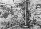 Альбрехт Альтдорфер. Пейзаж со сдвоенной елью