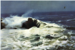 Ю. Пуджиес. Ревущая волна