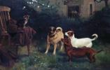 Чарльз Бертон Барбер. Cat and Dogs