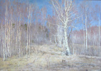 Boris Petrovich Zakharov. Light early April.