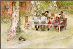Breakfast under the birch